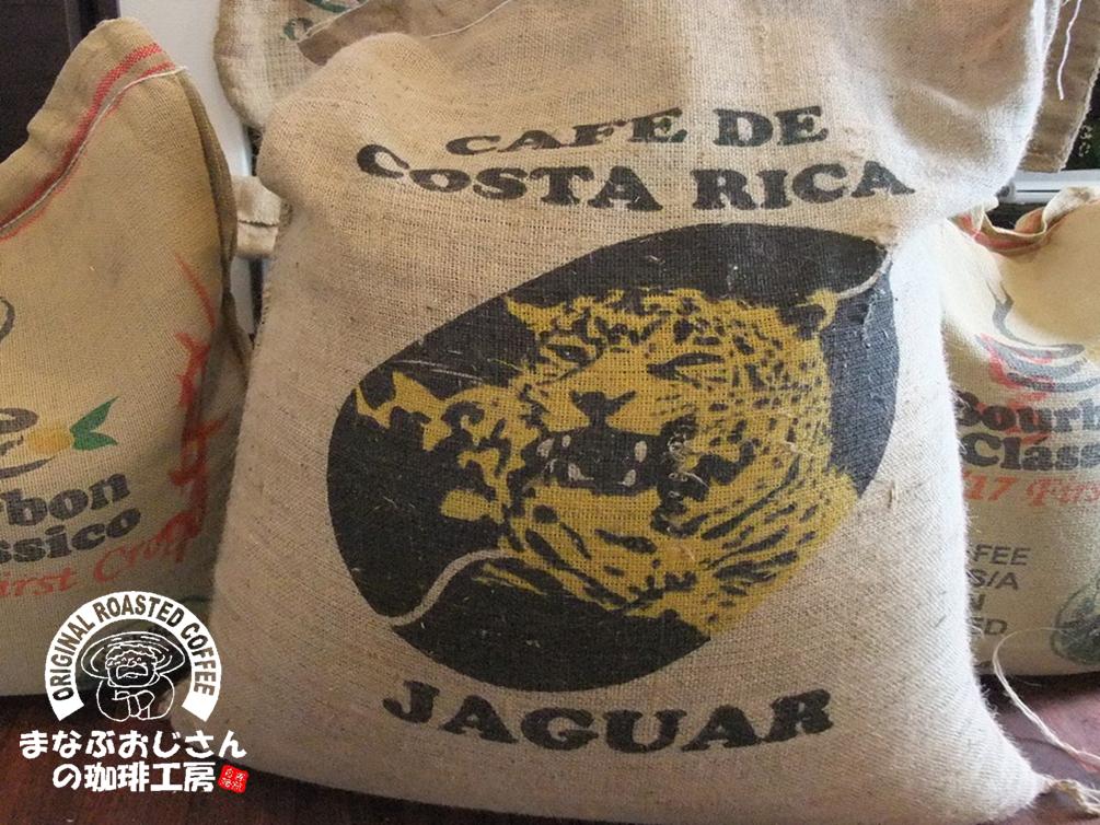 costarika-jaguar
