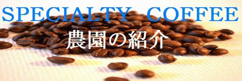 specialtycoffee